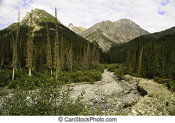 A view of a rocky river bed in the Alaskan wilderness under the mountain peaks