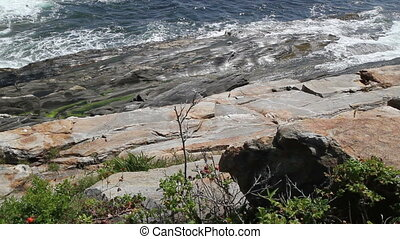 Rocky Sea Shore Maine USA Eleven