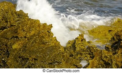 Rocky seashore. The waves roll on the coast and break against the rocks. Tide