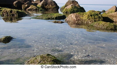 rocky shore by the sea