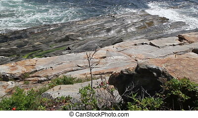 Rocky Shore Maine USA Seven