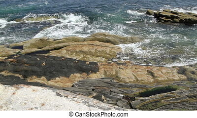Rocky Shore Maine USA Six