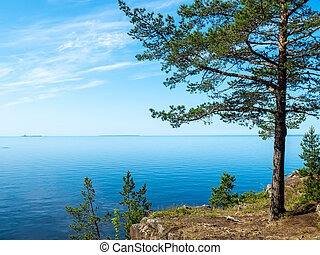Rocky shore of the lake, coniferous forest on the rocks