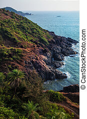 Rocky shore of the ocean with palm trees