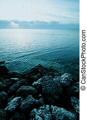 Rocky Shore of Atlantic Ocean. Florida USA. Sunrise at the...