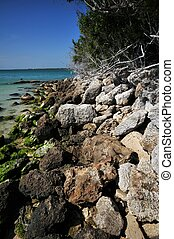 Rocky Shore of the Bahia Honda State Park, Florida Keys,...