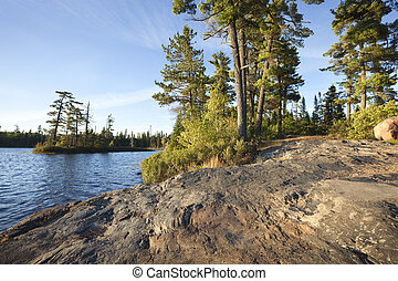 Rocky shore with pine trees on a Boundary Waters lake in Minnesota