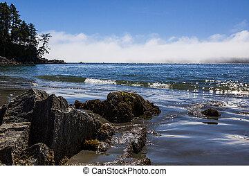 Rocky Shoreline near Tofino, on Vancouver Island, BC