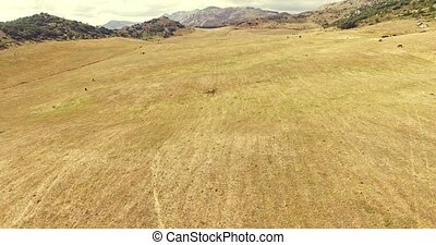 Rocky spanish landscape - Flat ground between hill in rocky ...
