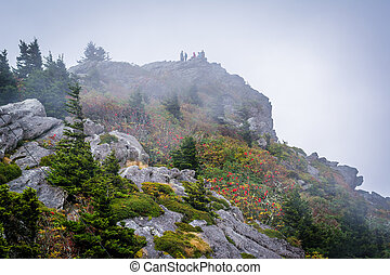 Rocky summit in fog, at Grandfather Mountain, North...