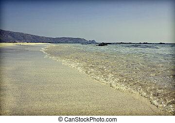 rocznik wina, plaża