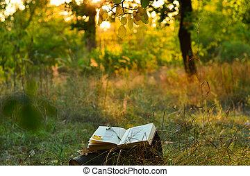 rocznik wina, pod, drzewo, poetyckość książka, outdoors