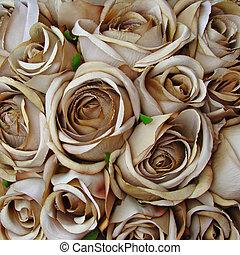 rocznik wina, róża