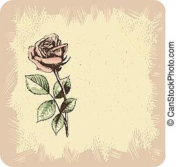 rocznik wina, tło, róże