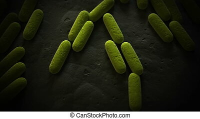 3d animaton of some generic rod shaped bacteria