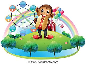 roda, ferris, balões, macaco, costas