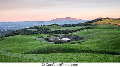 rodante, herboso, colinas, y, montaña