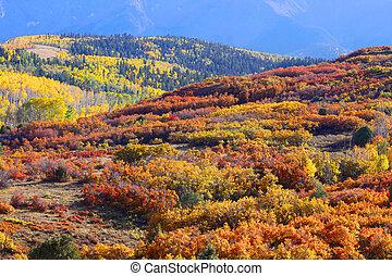 rodante, otoño, colinas, árboles