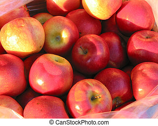rode appel, op, de markt van de landbouwer