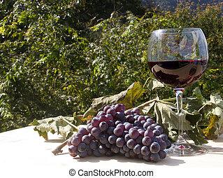 rode druiven, wijntje