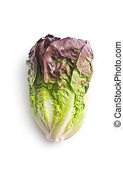 rode lettuce