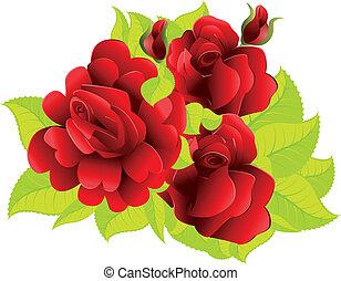 rode rozen, met, bladeren