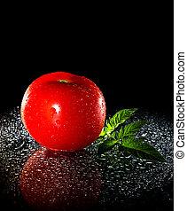 rode tomaat, op, zwarte achtergrond
