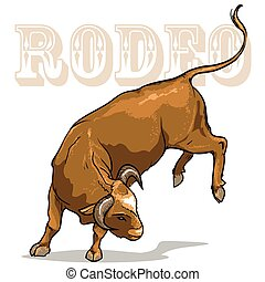 Rodeo Bull, Isolated - Rodeo Bucking Bull, Isolated on white...