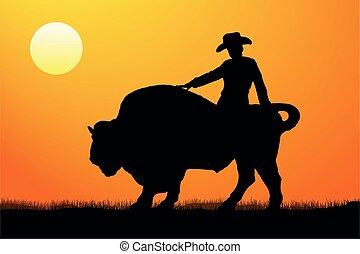 rodeo jeździec, sylwetka, wektor, zachód słońca