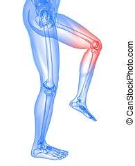 rodilla, doloroso, ilustración