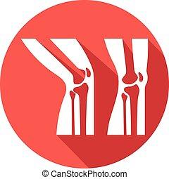rodilla, icono, anatomía, humano, plano