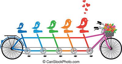 rodina, vektor, jezdit na kole, ptáček