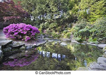 rododendro, jardín, primavera, cristal, cascada, manantiales