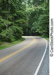rodovia, através, a, madeiras