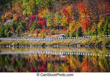 rodovia, através, outono, floresta