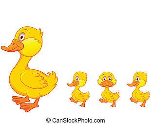 rodzina, kaczka