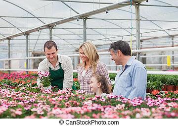 rodzina, wybierając, niejaki, kwiat, z, pracownik, w, ogrodowy środek