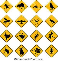 roedor, peste, señales
