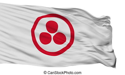 Roerich Flag Isolated Seamless Loop - Roerich Flag, Isolated...