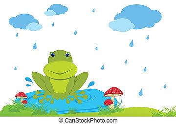 rog in Rainy Day