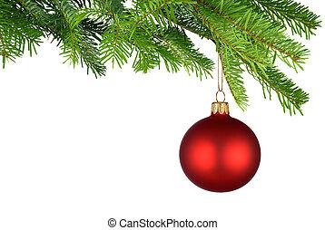 rojo, bauble de navidad, ahorcadura, de, fresco, verde,...