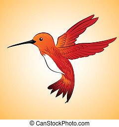 rojo, colibrí
