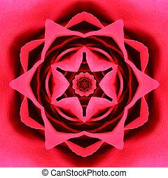 rojo, concéntrico, flor, center., mandala, caleidoscópico,...