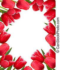 rojo, fresco, flores del resorte, fondo., vector, illustration.