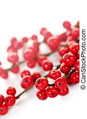 rojo, navidad, bayas