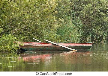 rojo, remar el barco, en, lago