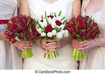 rojo y blanco, tulipán, y, rosa, boda, ramos
