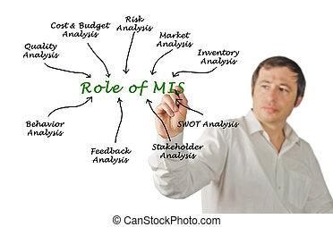 Roles of MIS
