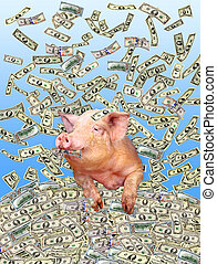 rolig, dollars, hög, gris