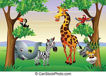 rolig, safari, djur, tecknad film